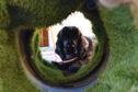 Nevis in the sensory garden