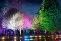 Inverness Winter Wonderland Festival returned to Whin Park. Picture by Sandy McCook.