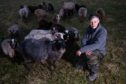 Sheep farmer Christine McKinnon with her depleted flock