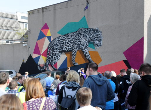 Call for walls as organisers prepare for Nuart Aberdeen 2020 | Press and Journal
