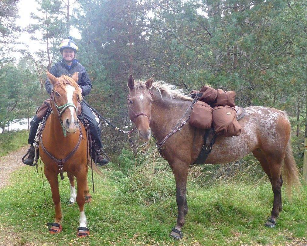 horse trek e1623574171249 4.